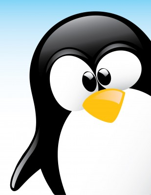 illustration imagée de Google Penguin, le nouvel algo de google